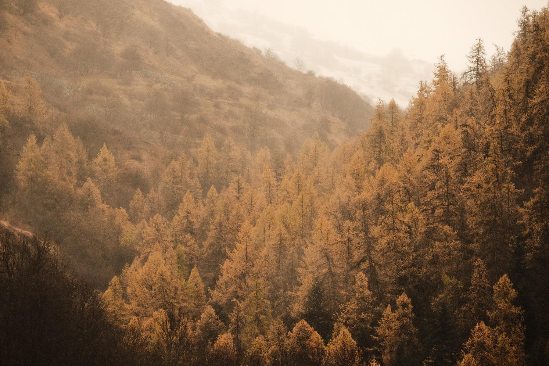 Couleurs d'automne à Valloire depuis l'appartement