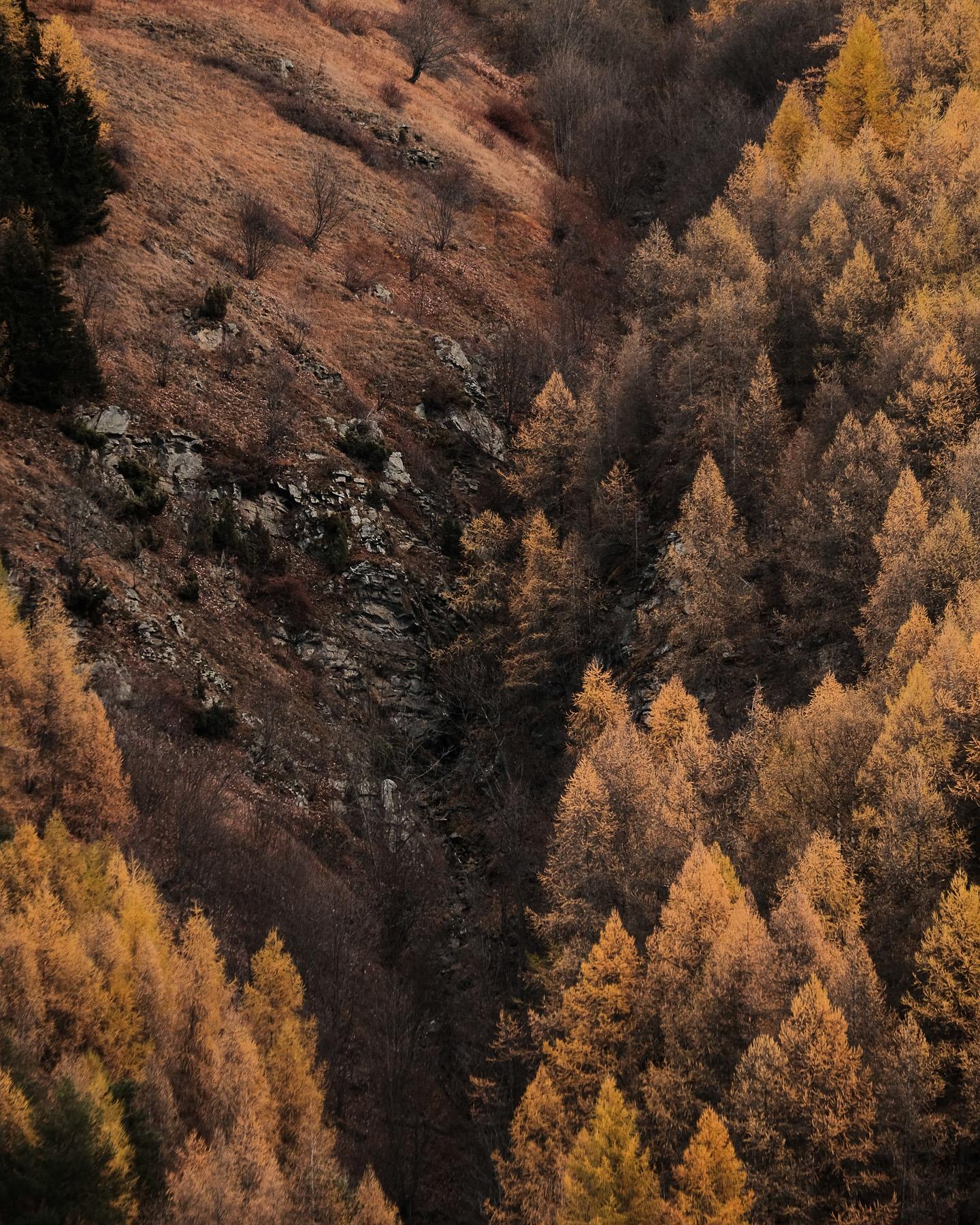 Couleurs d'automne et mélèzes d'or à Valloire lors d'une balade