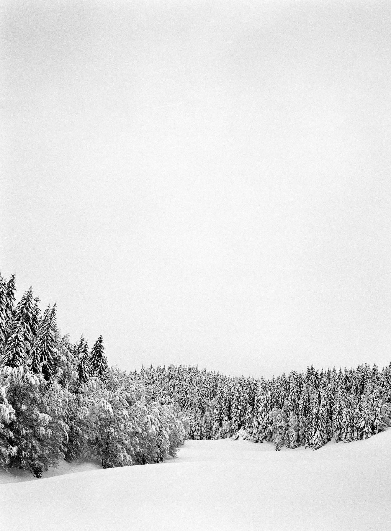 Balade au Revard sous la neige, HP5 + Fuji GA 645 moyen format